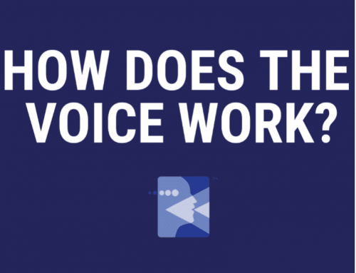 How Does The Voice Work?